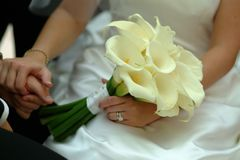 Woman In White Wedding Gown Holding White Petaled Flowers Royalty Free Stock Images