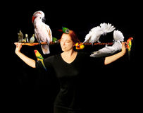 Woman Who Really Loves Her Birds. Woman Who Has Multiple Exotic Birds in Her Very Long Red Hair royalty free stock image