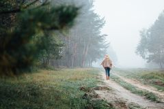Woman in wide-brimmed felt hat and authentic poncho going along the forest at foggy morning.  royalty free stock photo