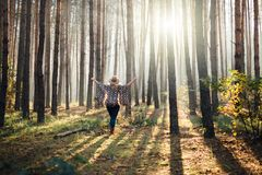 Woman in wide-brimmed felt hat and authentic poncho standing in a foggy pine tree forest.  royalty free stock photography