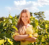 Woman winegrower. At harvest time in the vineyard Stock Photography