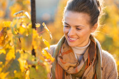 Woman winegrower inspecting vines in vineyard outdoors in autumn. Happy brown-haired woman winegrower inspecting grape vines in vineyard outdoors in autumn Stock Photos