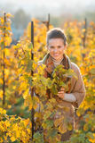Woman winegrower standing among grape vines in autumn vineyard Stock Photos