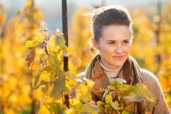 Woman winegrower standing among grape vines in autumn vineyard Stock Image