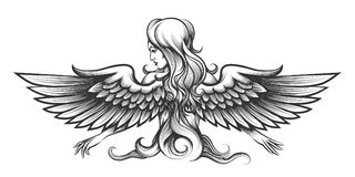 Woman with wings engraving illustration. Long haired woman with angel wings drawn in engraving style. Vector illustration Royalty Free Stock Photo