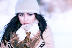 Woman on the winter background Stock Images