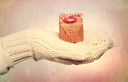 Woman with winter gloves holding small gift box Royalty Free Stock Photos