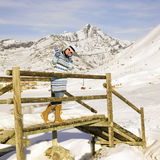 Woman in winter mountains Royalty Free Stock Image