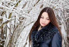 A woman is in the winter park Stock Image