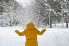 Woman in winter Park chooses the path to reach a goal. Royalty Free Stock Image