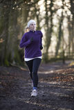 Woman On Winter Run Through Woodland Royalty Free Stock Photo