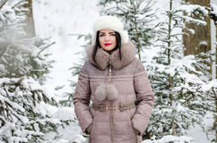 Woman in winter scenery in forest Stock Photos