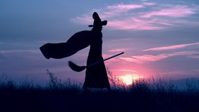 Sorceress in hat and cloak holding besom walks on the field. Woman in a witch costume and broom walking fast cityscape at night view on evening blue sky stock video
