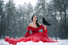 Woman witch in red dress with raven in her hand sits on snow in. Forest. Her long dress lying on snow, and she closed her eyes. Around snowing and snowflakes stock photo
