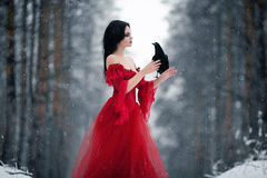 Woman witch in red dress and with raven in her hands in snowy fo. Rest. Her long dress lying on snow and she looks at raven. Around snowing and snowflakes fall Stock Image