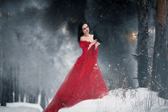 Woman witch in red dress and with raven in her hands in snowy fo. Rest. Her long dress lying on snow and she looks at raven. Around snowing and snowflakes fall Stock Photos