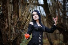 A woman in a witch suit in a forest Stock Photography