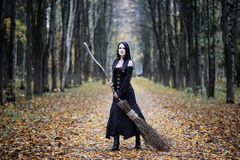 A woman in a witch suit in a forest. A woman in a witch suit in a dense forest on a ritual royalty free stock images