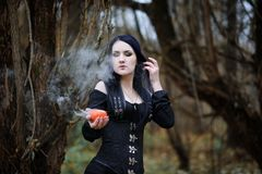 A woman in a witch suit in a forest Royalty Free Stock Photos