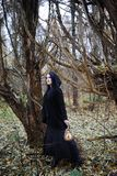 A woman in a witch suit in a forest. A woman in a witch suit in a dense forest on a ritual Royalty Free Stock Image