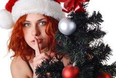 Woman With Christmas Tree Stock Photos