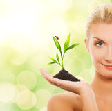 Woman With Young Plant Royalty Free Stock Images