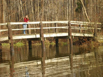 Woman on wooden bridge. A young teenage woman standing on a small, pedestrian bridge crossing water in woods Stock Images