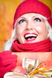 Woman with wool scarf Stock Image
