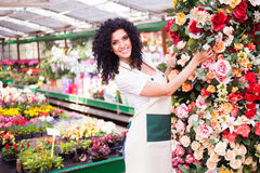 Woman at work in a greenhouse Royalty Free Stock Photos