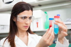 Woman at work in a laboratory Royalty Free Stock Photography