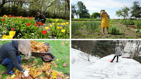 Woman work seasonal works in garden. Footage clips collage. stock video