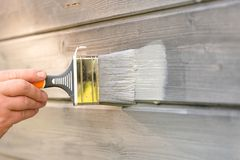 Free Woman Worker Painting Wooden House Exterior Wall With Paintbrush And Wood Protective Color Royalty Free Stock Image - 151685326
