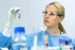 Woman working with analysis test samples in a laboratory Stock Photos