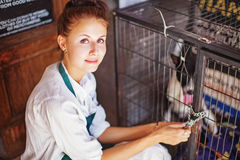 Woman working in animal shelter. Young woman working in animal shelter Royalty Free Stock Images