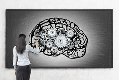 Woman working at brain sketch on blackboard. Rear view of woman drawing brain sketch on blackboard. Cogs are placed above it. Concept of logical decisions in Stock Photos