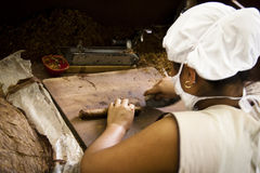 Woman working in a cigar factory Stock Photos