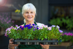 Woman working in florist shop Royalty Free Stock Photos