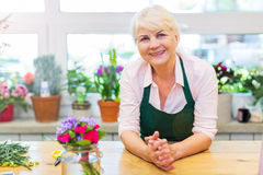 Woman working in florist shop Royalty Free Stock Image