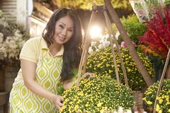 Woman working in flower shop royalty free stock image