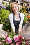 Woman working at flower shop smiling Stock Image