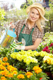 Woman working with flowers at a greenhouse. Stock Image