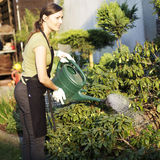 Woman working in garden Stock Images