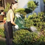 Woman working in garden Stock Images