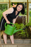 Woman working in the garden Royalty Free Stock Image