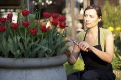 Woman working in garden Stock Photos