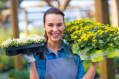 Woman working in garden center Stock Images