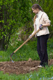 Woman working in the garden Stock Images