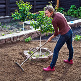 Woman working in garden Royalty Free Stock Image
