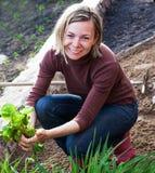 Woman working in garden Stock Photo