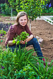Woman working in garden Royalty Free Stock Photo